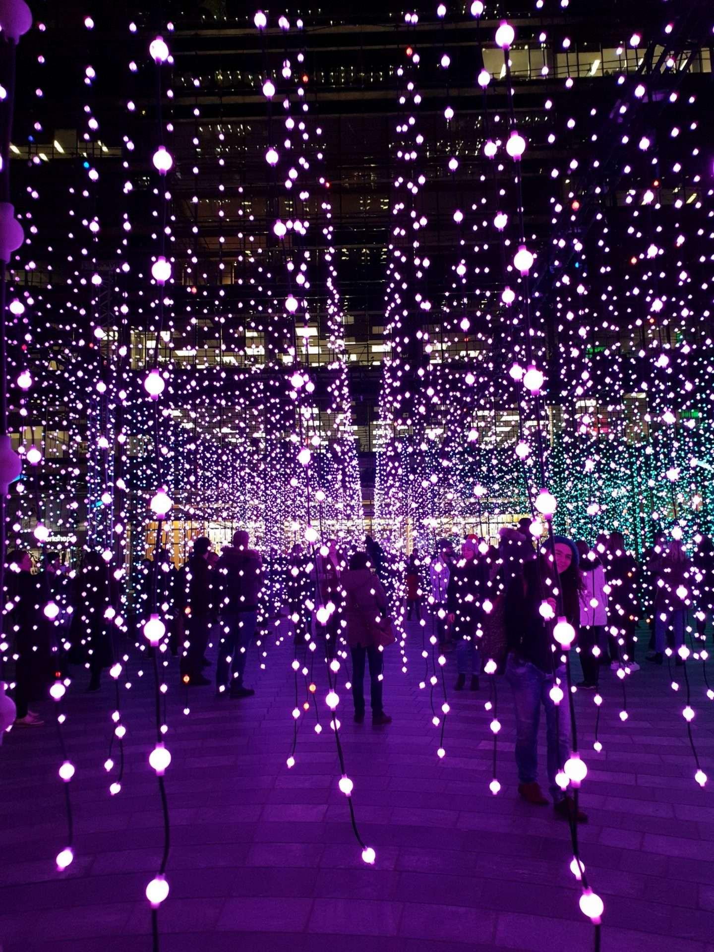 Stunning Purple Submergence