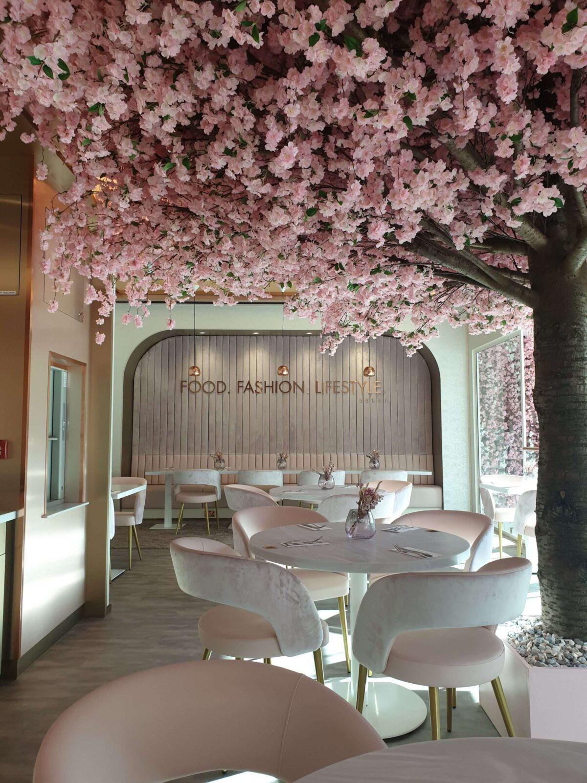 Cherry Blossom Tree Setting